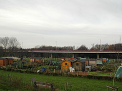 The allotments in Gentbrugge