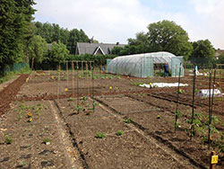 Allotment site Wallemeers in Roeselare